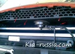 Сетка в бампер за решетку радиатора Спортейдж